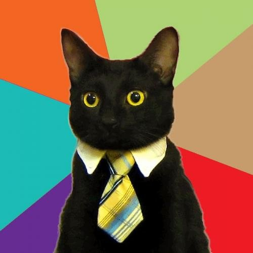 Business Cat, Esq.