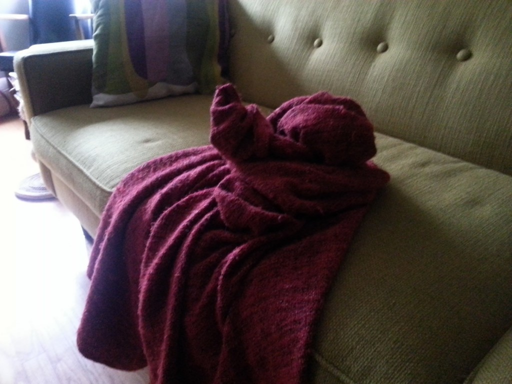 The morning after: Blanket after date night with Birdsworth