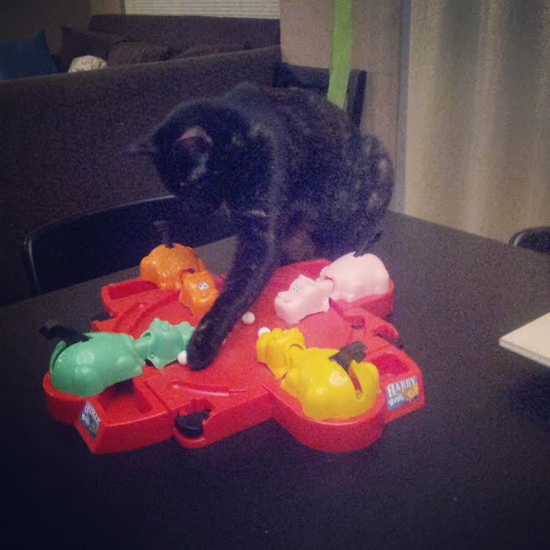 Captain Waffles vs. Hungry Hungry Hippos